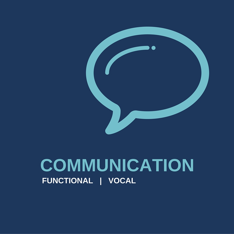 Functional Communication: Autism Preschool with ABA Behavior Therapy