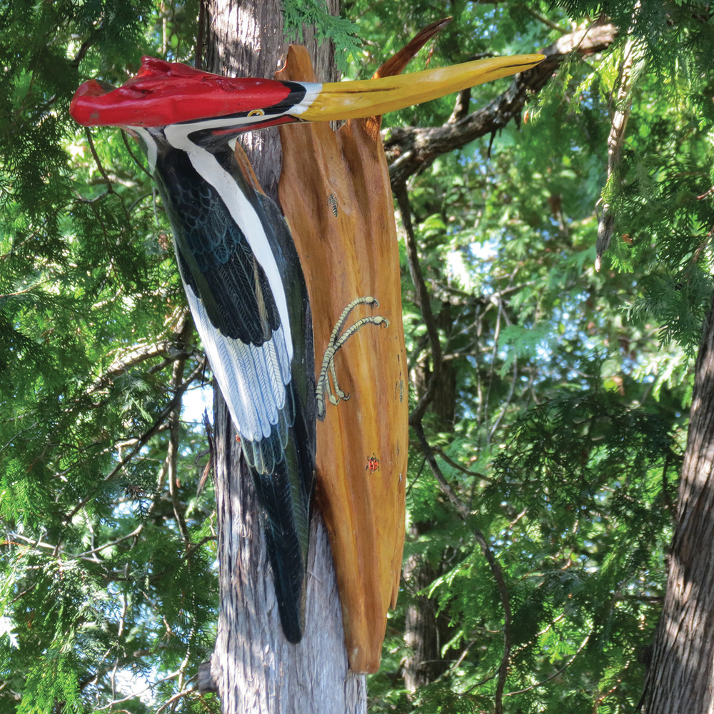 With her driftwood sculptures Ingrid Monteith has taken what many people see as debris and turned it into an art form.