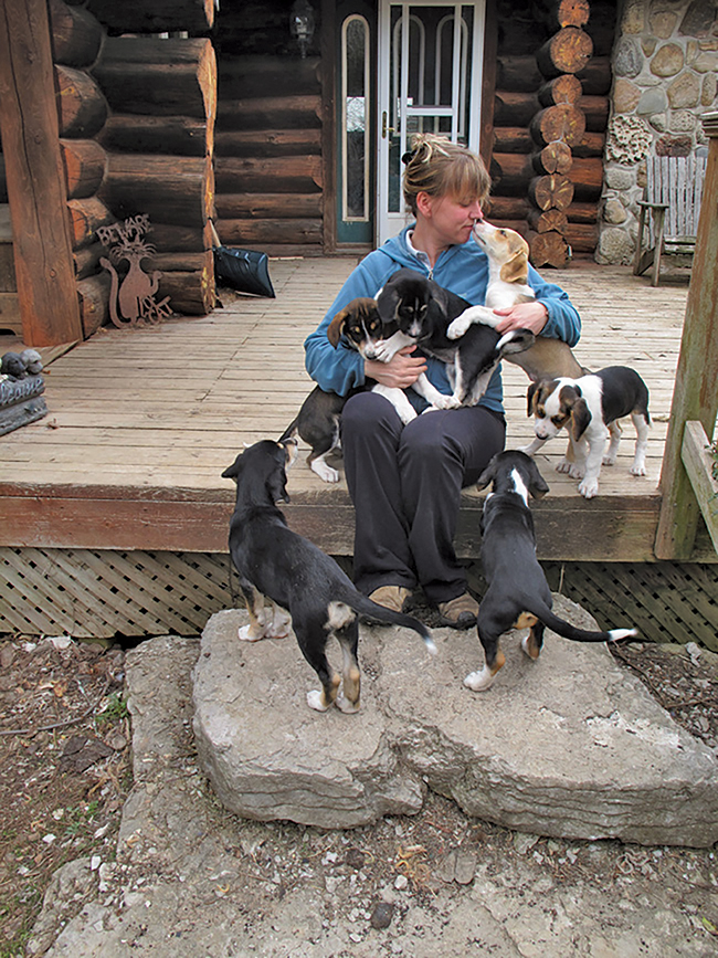 Alison Sabo is the current president of HART, which has been rescuing, rehabilitating and re-homing abused and abandoned dogs in North Hastings.Photo courtesy HART dog rescue