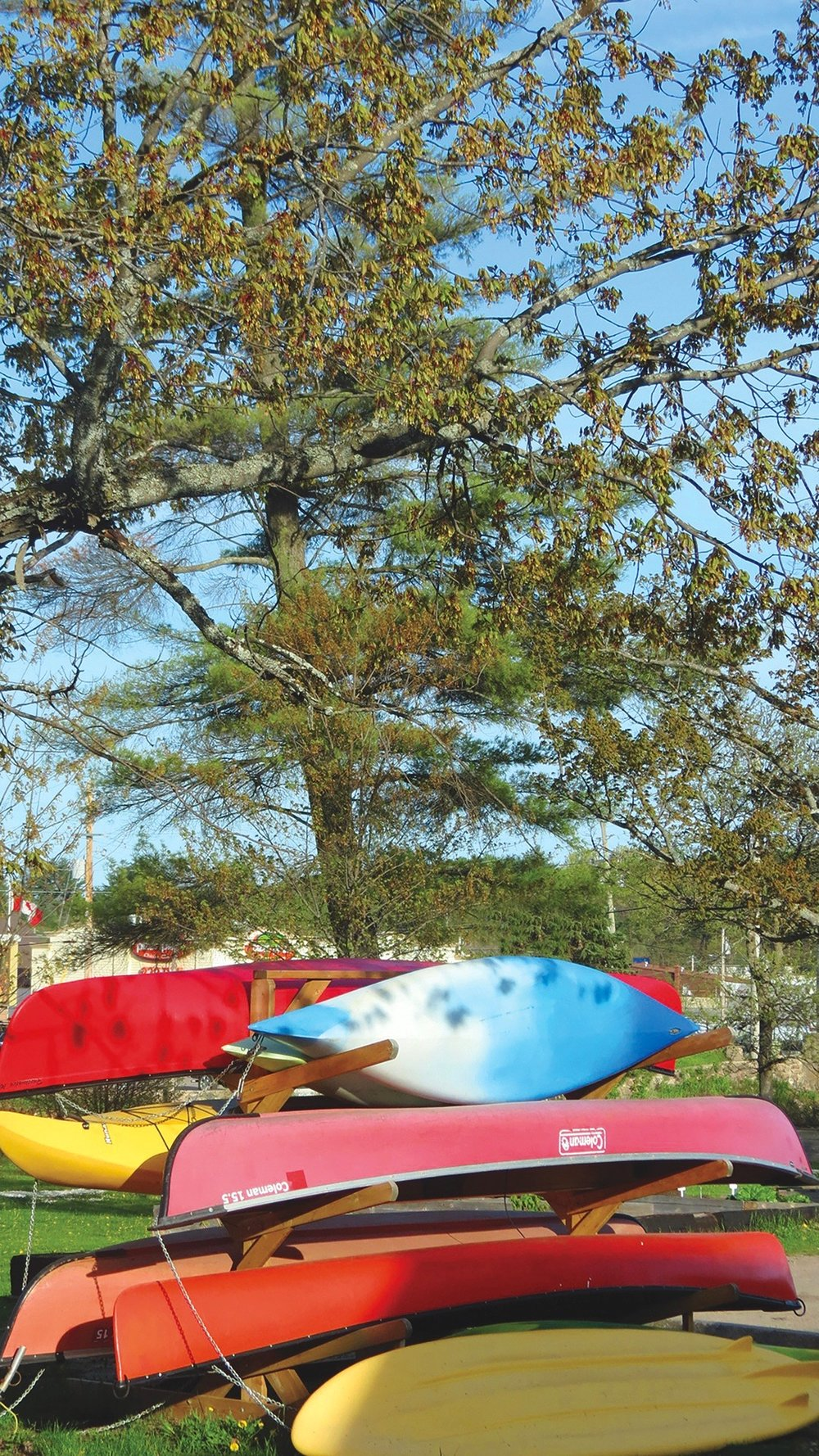 Canoes and kayaks are available for rental at Riverside Park, where the Waddle Dawb Cafe also serves seasonal snacks.