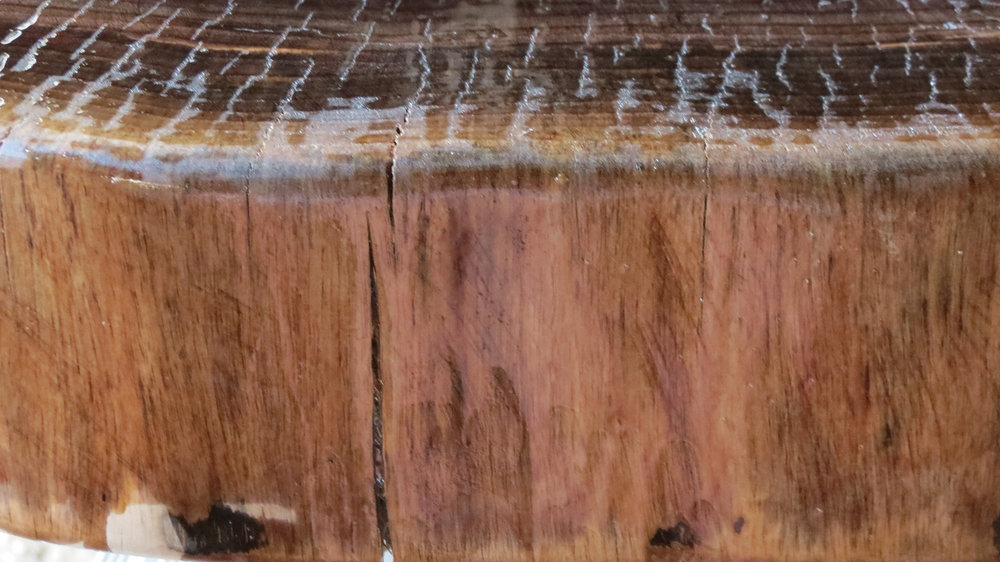 Live edge featuring the natural cracks and crevasse of the tree, showing the cambium of the trunk.