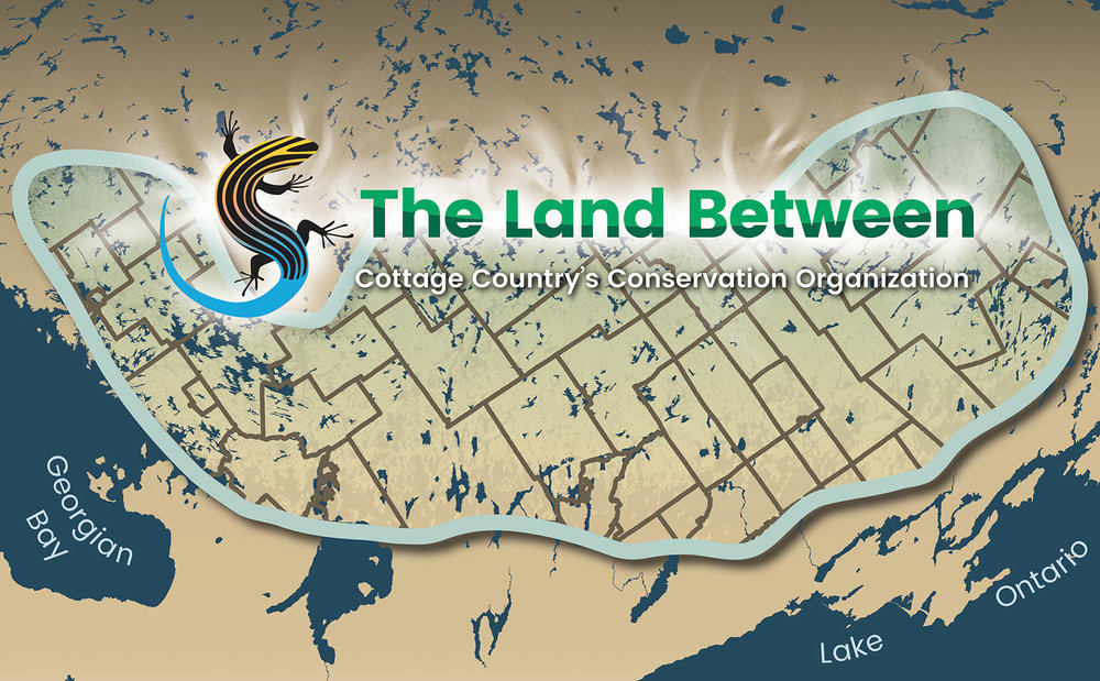 The Land Between Region covers nine counties and is distinguished by its water, plant, insect and animal diversity, which includes Ontario's only native lizard. Graphic courtesy The Land Between