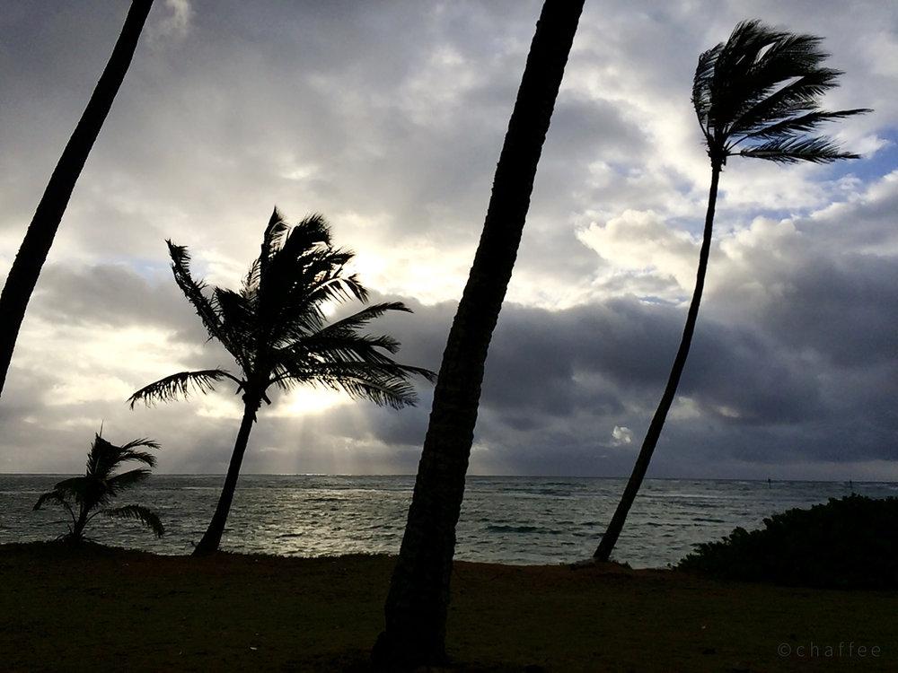 16_chaffee-kauai-03.jpg