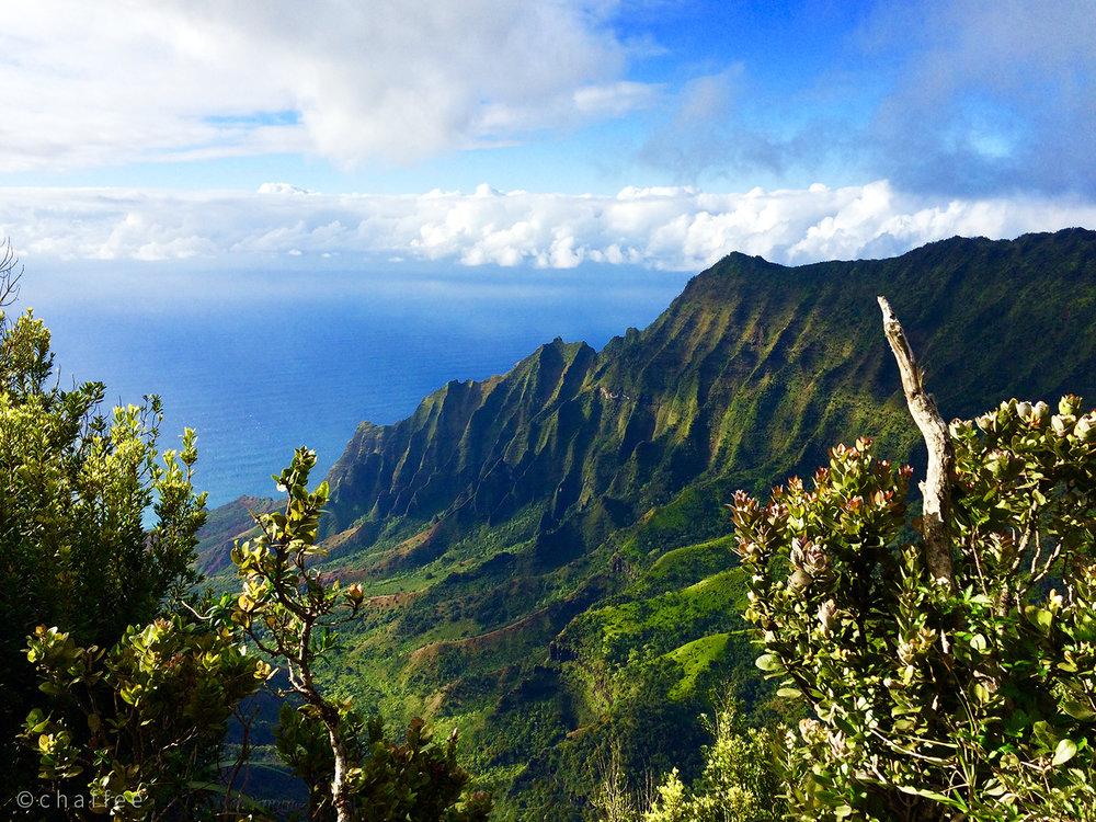 16_chaffee-kauai-07.jpg