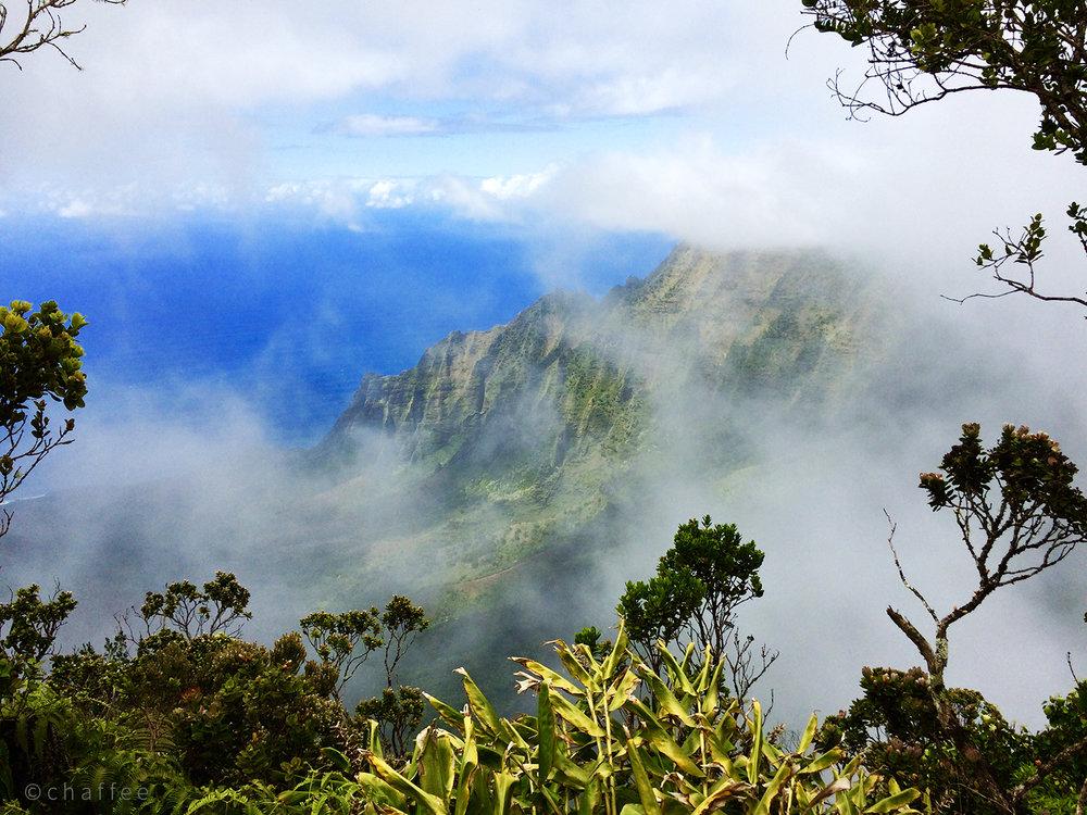 16_chaffee-kauai-08.jpg