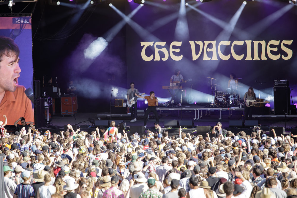 28_thevaccines_fallsfestival_18-19-11.jpg