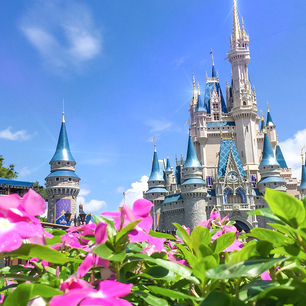Walt disney world - The best of the East Coast phenomenon!