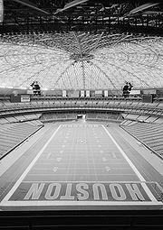 Houston Astrodome Analogy