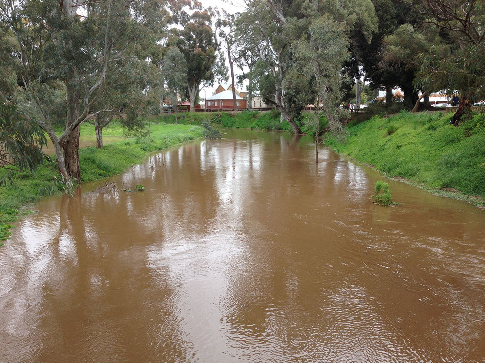 The South Para River looking back towards the local Foodland   Photo: Gerri Ranger