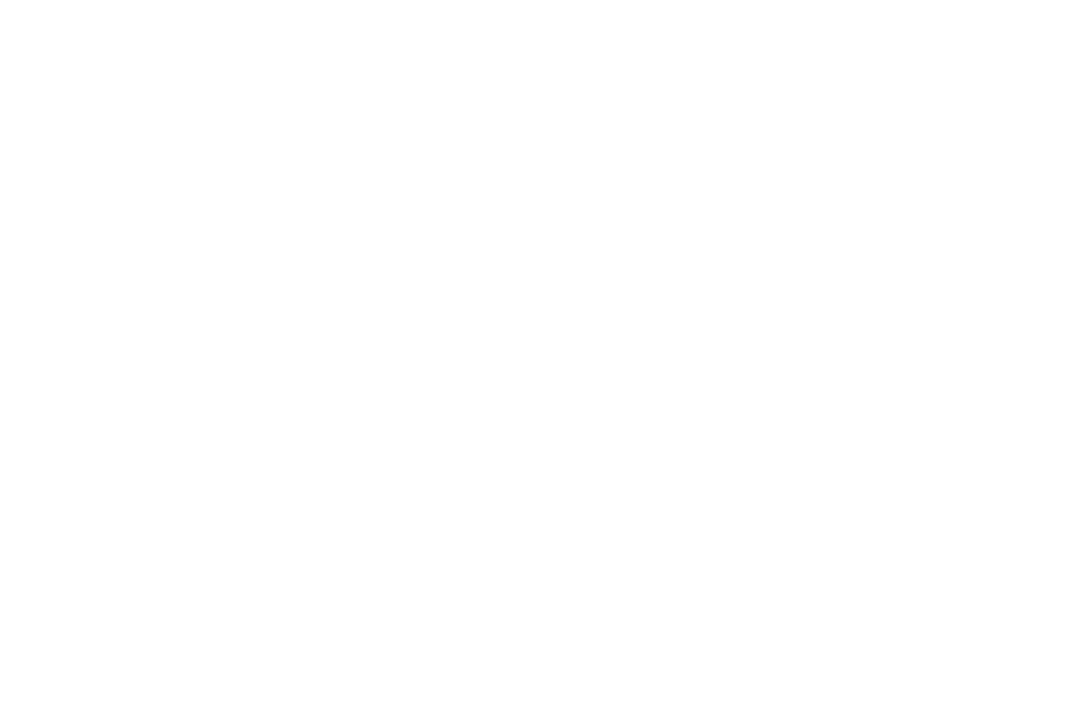 The Tree Fairy Arborist