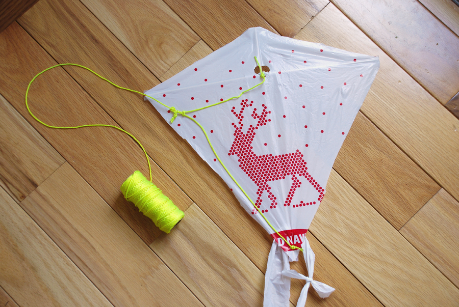 Reduce, Reuse & DIY Craft Plastic Bags