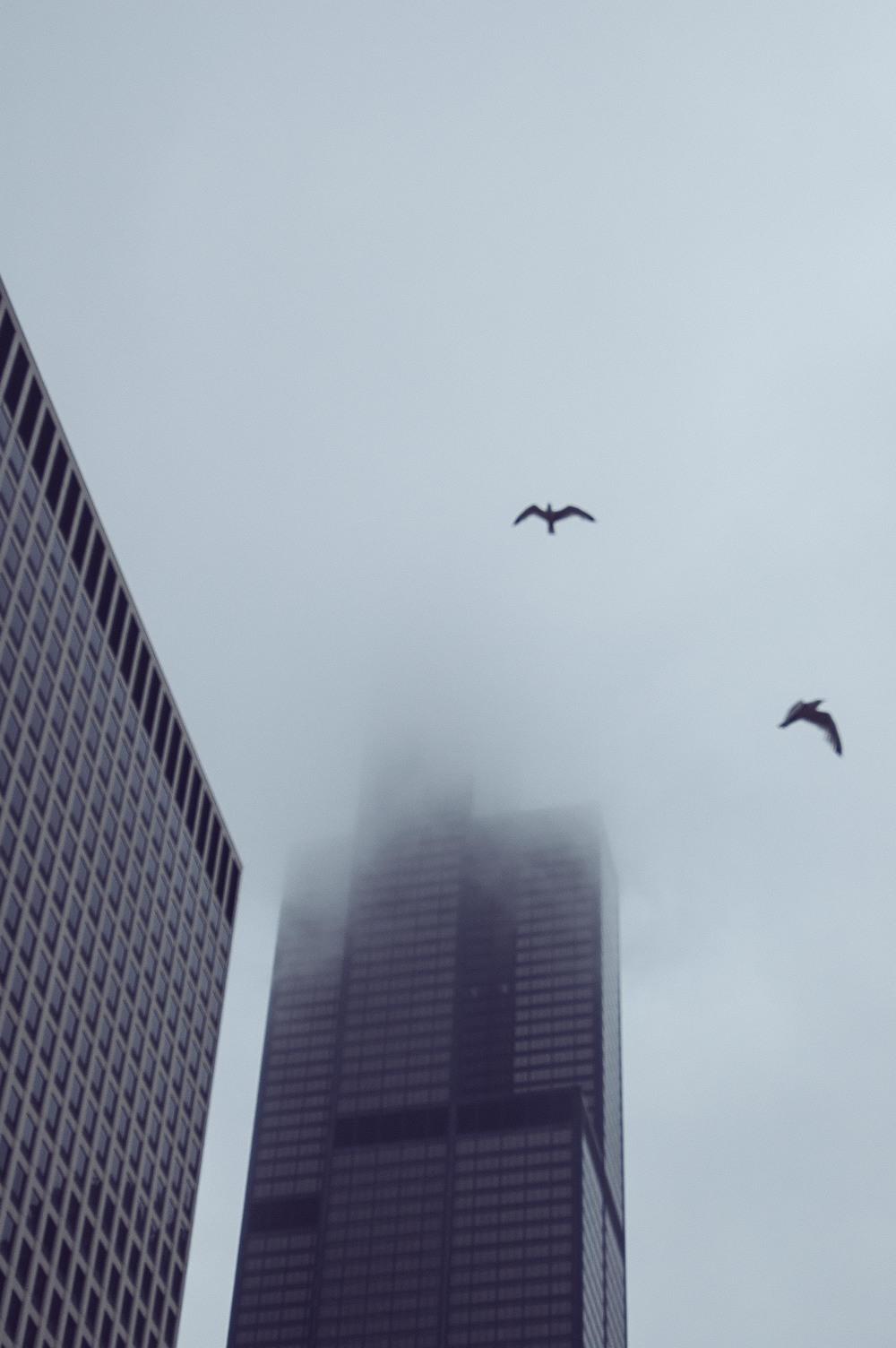 2010_0613_D70_Chicago_DSC_0015.jpg
