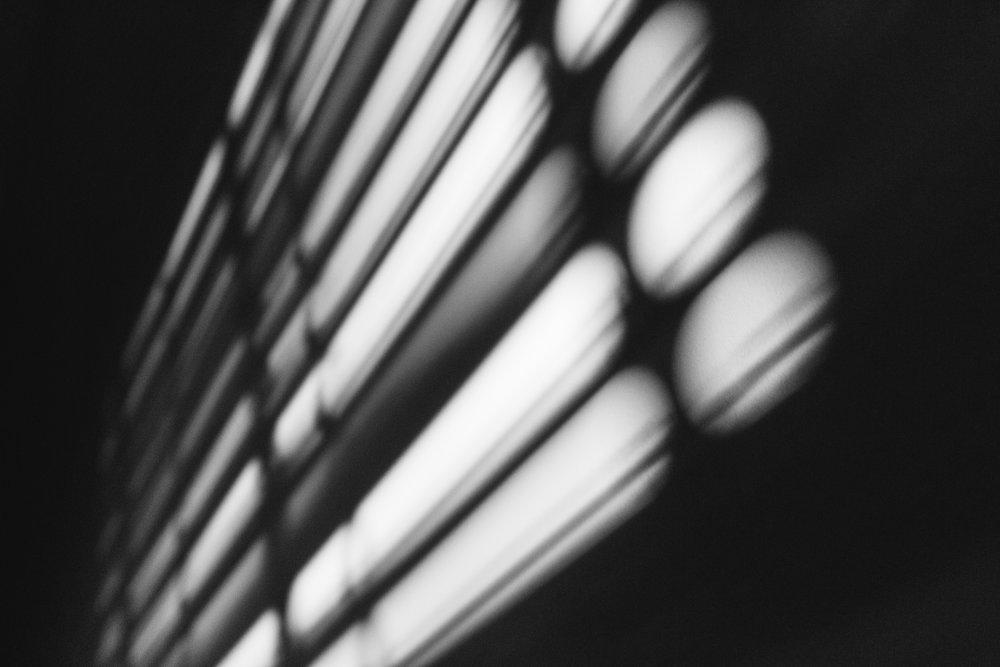 2016_0824_5D3_Light_0358.jpg