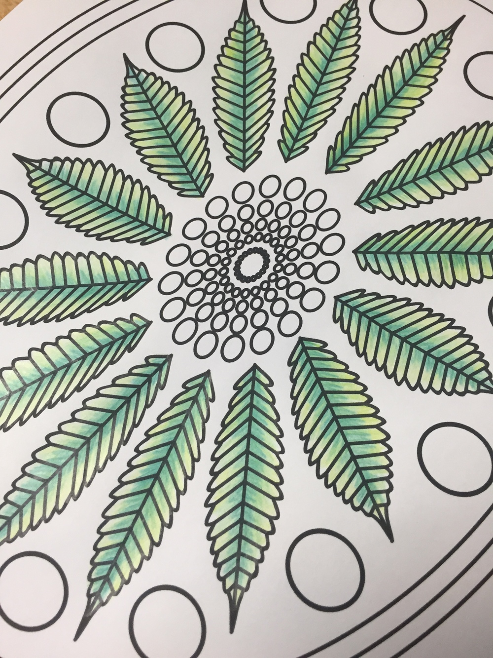 stoner adult coloring