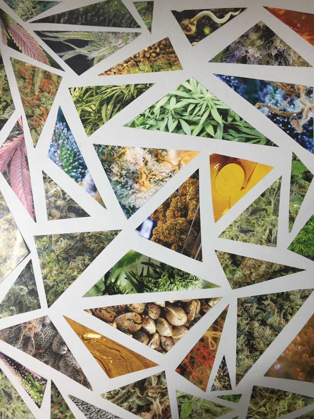 Diy Book Cover Collage : High times magazine collage wall art — chronic crafter
