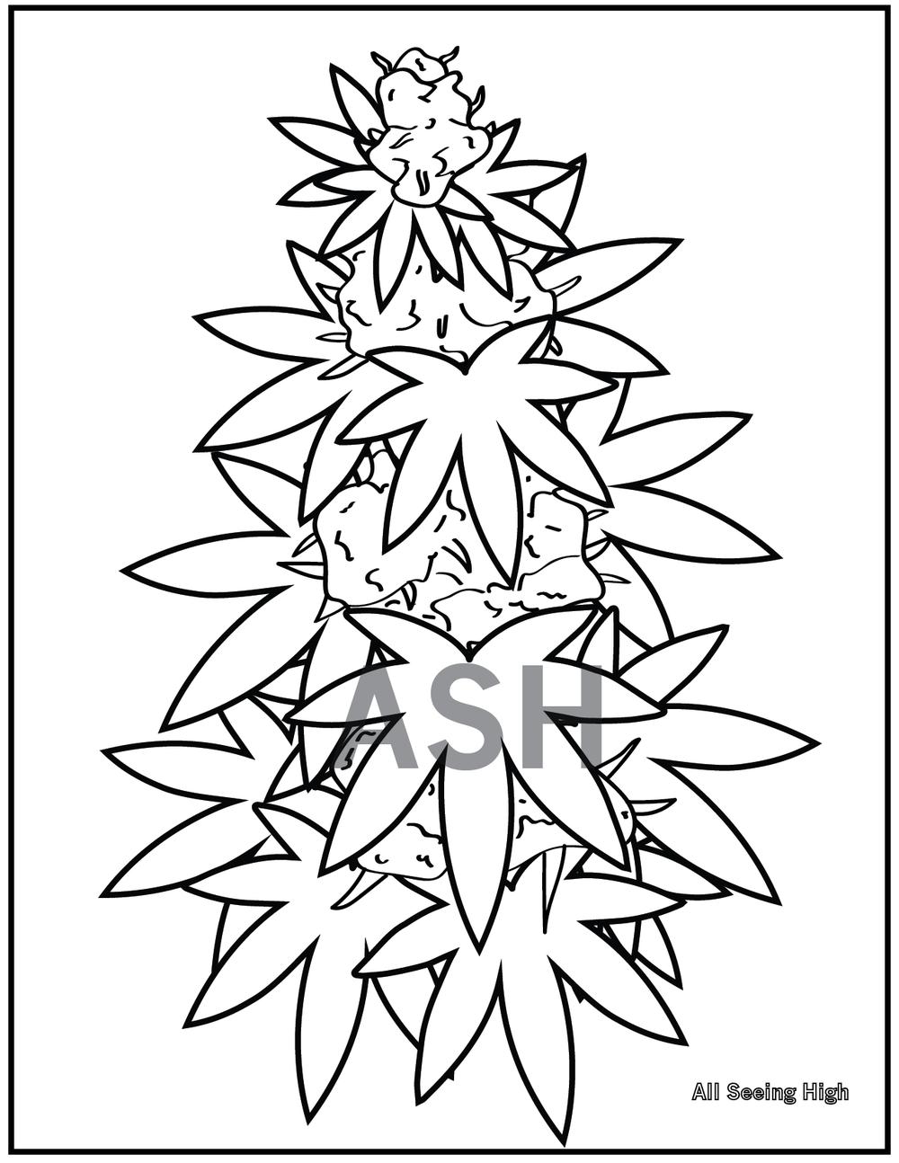 Marijuana Plant Colouring Page-02.png