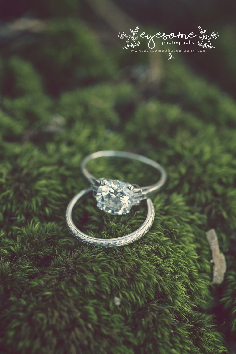 A mossy spot proved perfect placement for the wedding rings