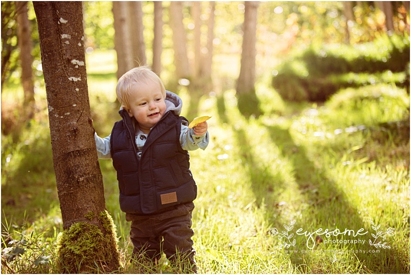 The joy of finding a leaf and catching the wee man's expression just before he actually eats it! Little O is only just starting to walk unassisted, but with the help of a handy tree he managed to stabilise himself for this portrait. The light was just beautiful on this early autumn Sunday, and the gorgeous gardens of Harlow Carr in Harrogate was our chosen location