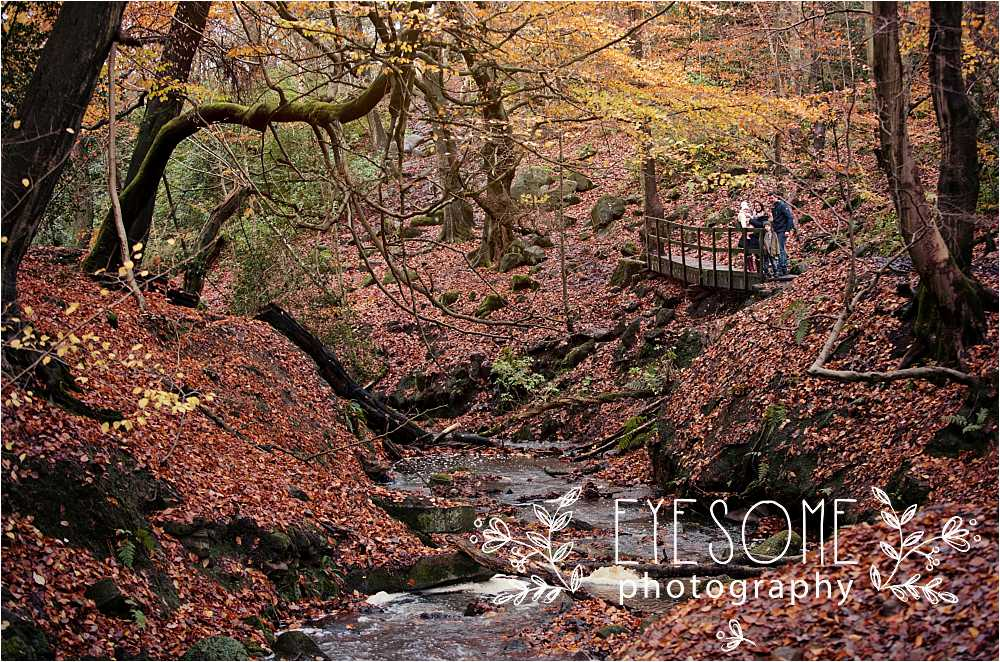 Birk Crag is an enticing network of steep paths, thick woodland and a babbling stream. Autumn's colour is shown off to its best here, and makes for beautiful family portraits