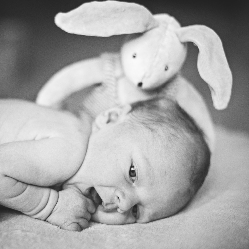 yorkshire newborn family and wedding photographer