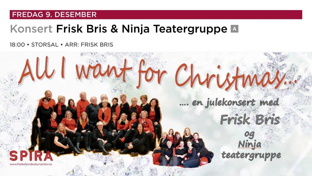 FRISK BRIS - julekonsert