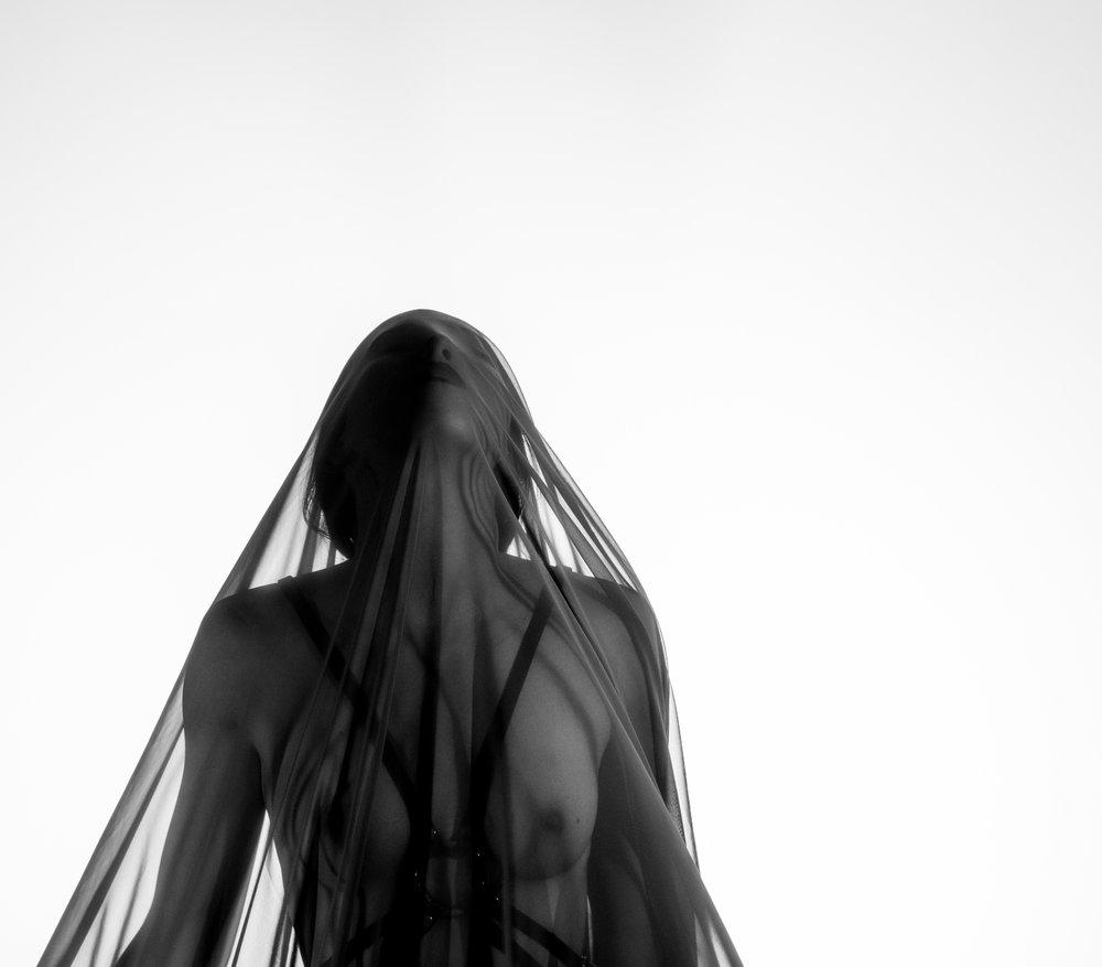 Alex Butterfield Photography -  Flu[in]ence