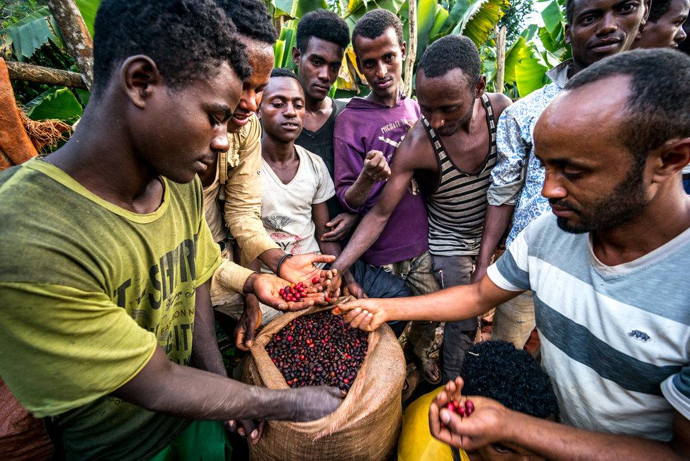 Ethiopia - Alan Schaller-104.jpg