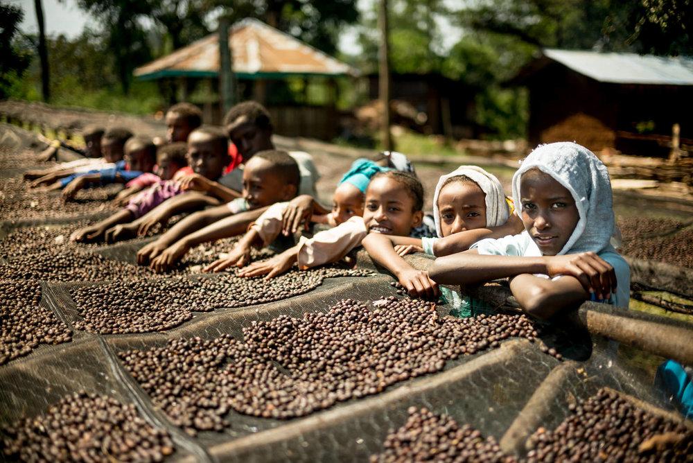 Ethiopia - Alan Schaller-30.jpg