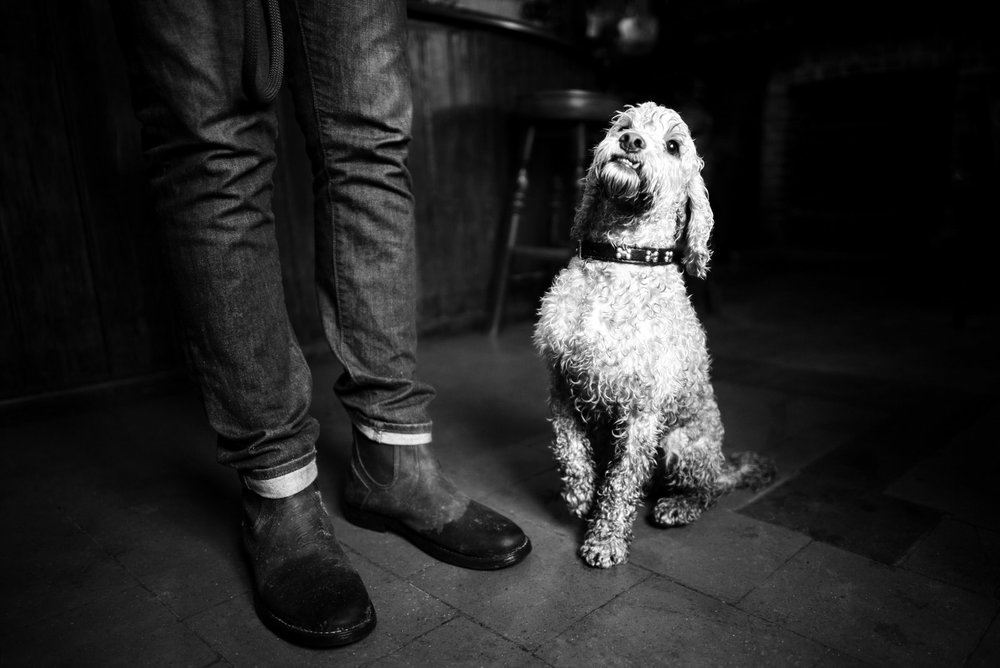 Alan Schaller - Street Photographer - Dogs 35.jpg