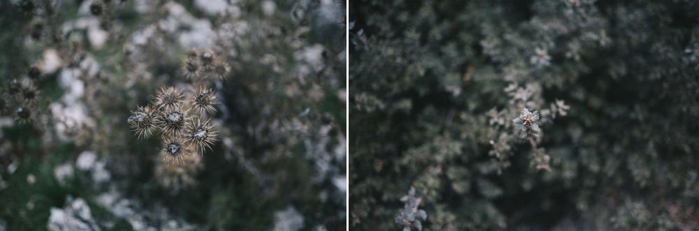 Montaje9.jpg