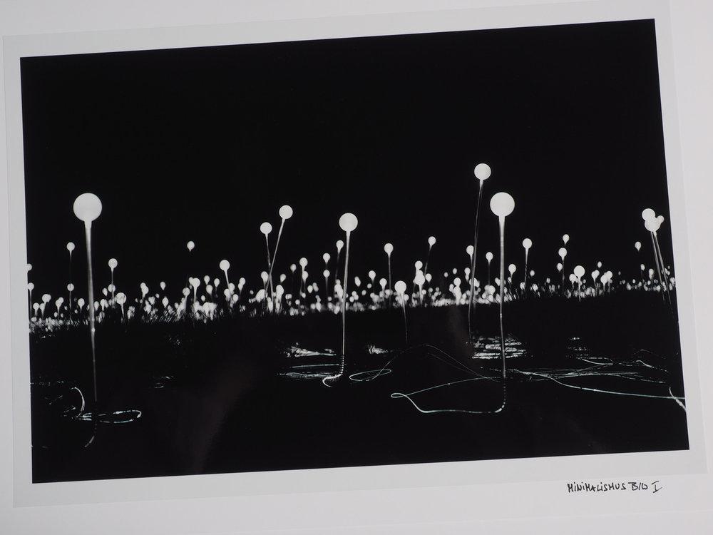 Fotos: Wolfgang Oberascher