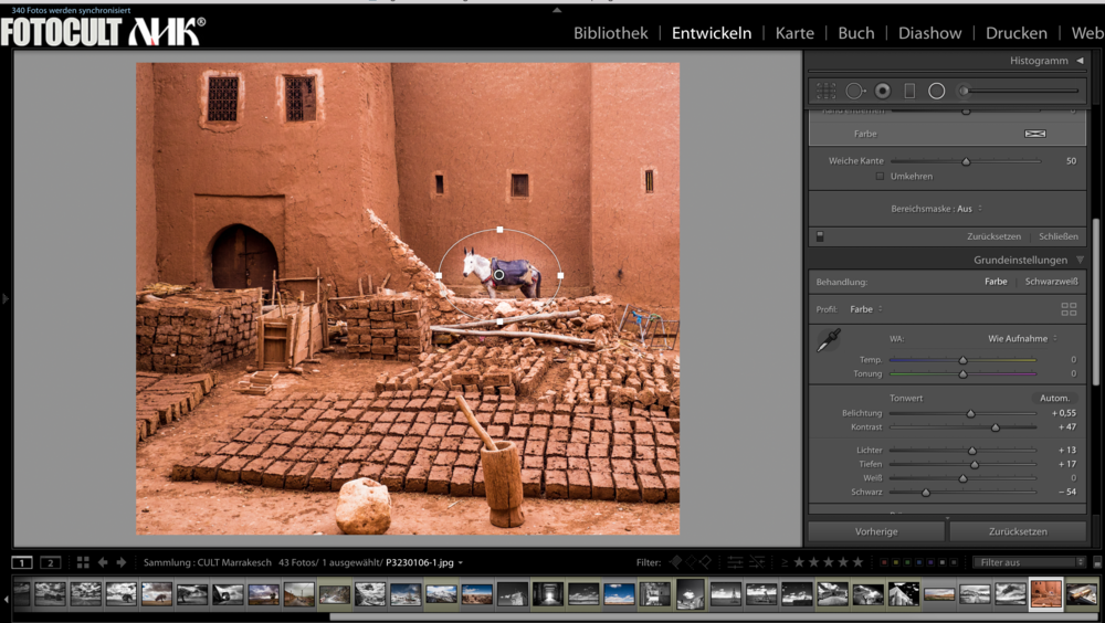 RAW Entwicklung mit Lightroom Classic