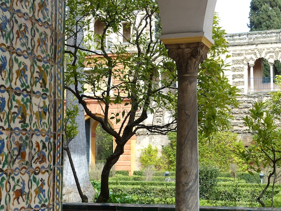 alcazar-gazebo-tree.JPG