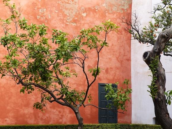 alcazar-pink-wall.JPG