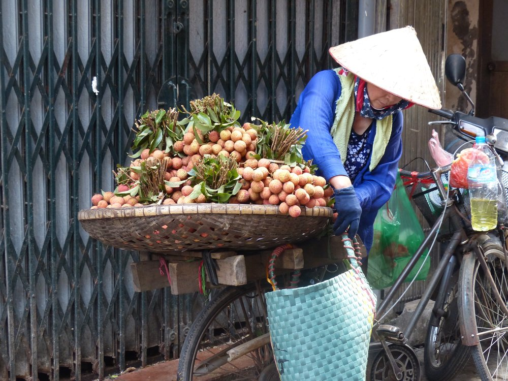 Before our trip, I'd only ever had lychees out of a can, to the shock of the Vietnamese that we met.