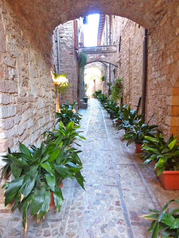 alley in spello, umbria