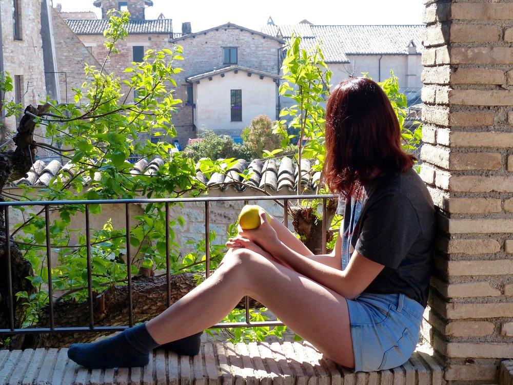 Siena_terrazza.jpg