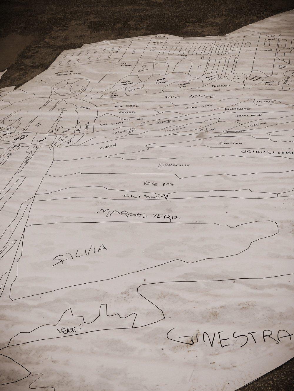 Template for Infiorata in Spello, Umbria