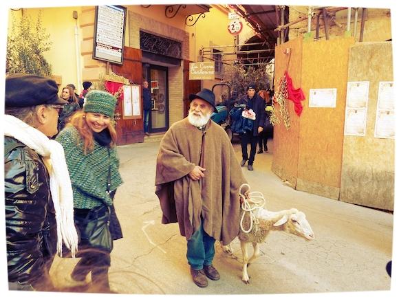 Shepherd at L'Oro di Spello, Umbria