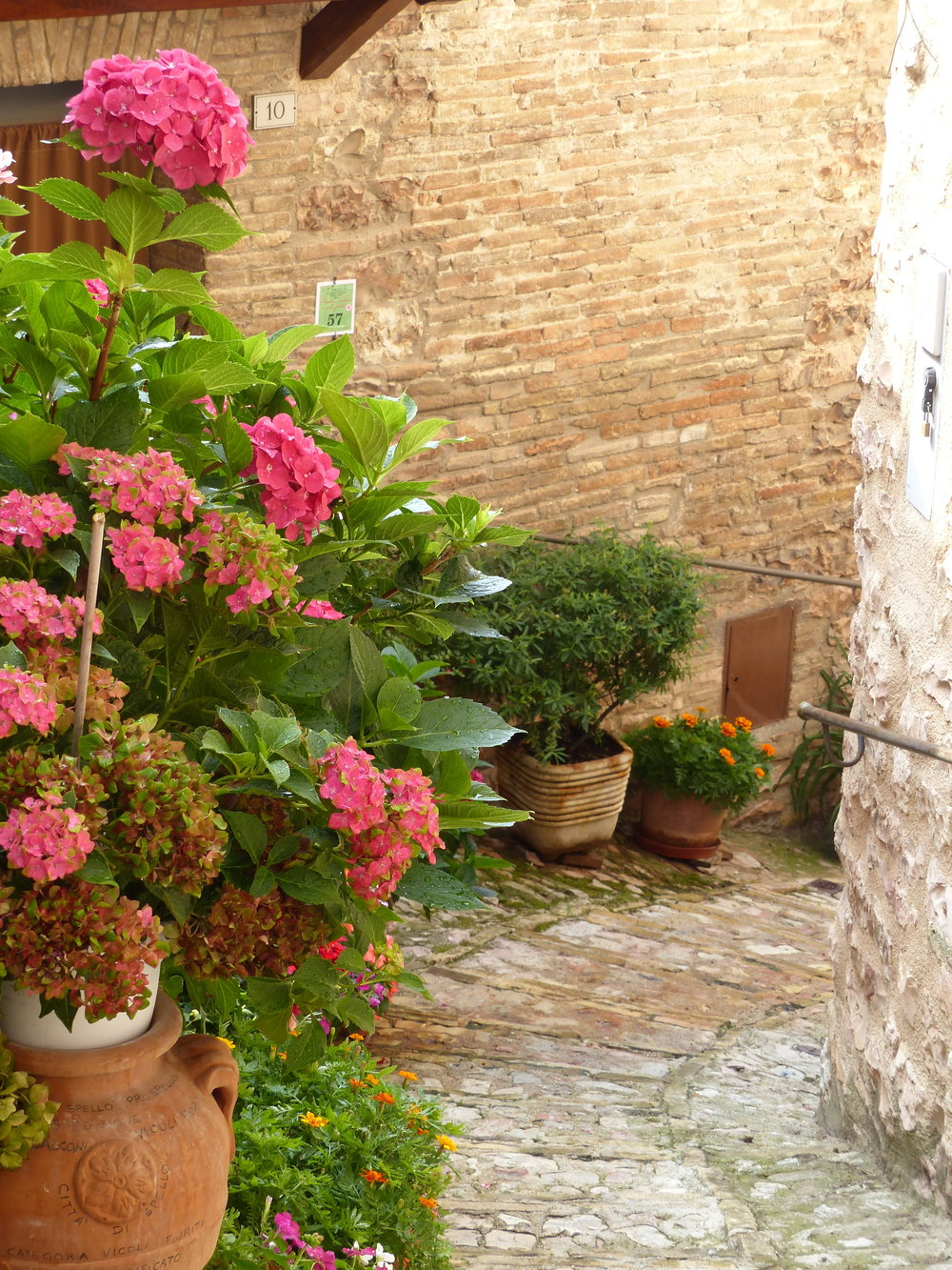 View down an alley in Spello, Umbria