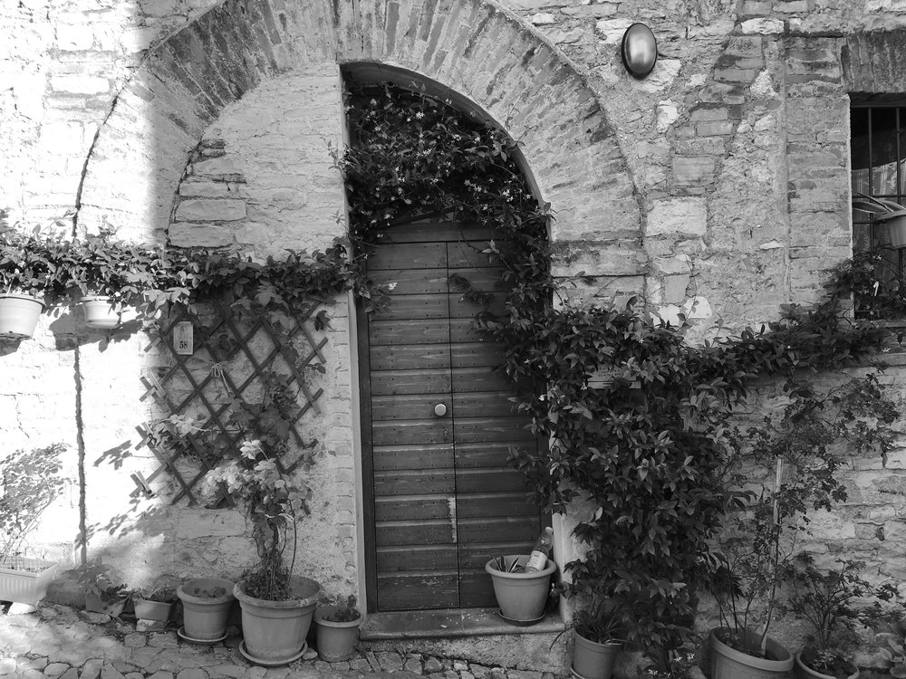 Jasmine in Umbria