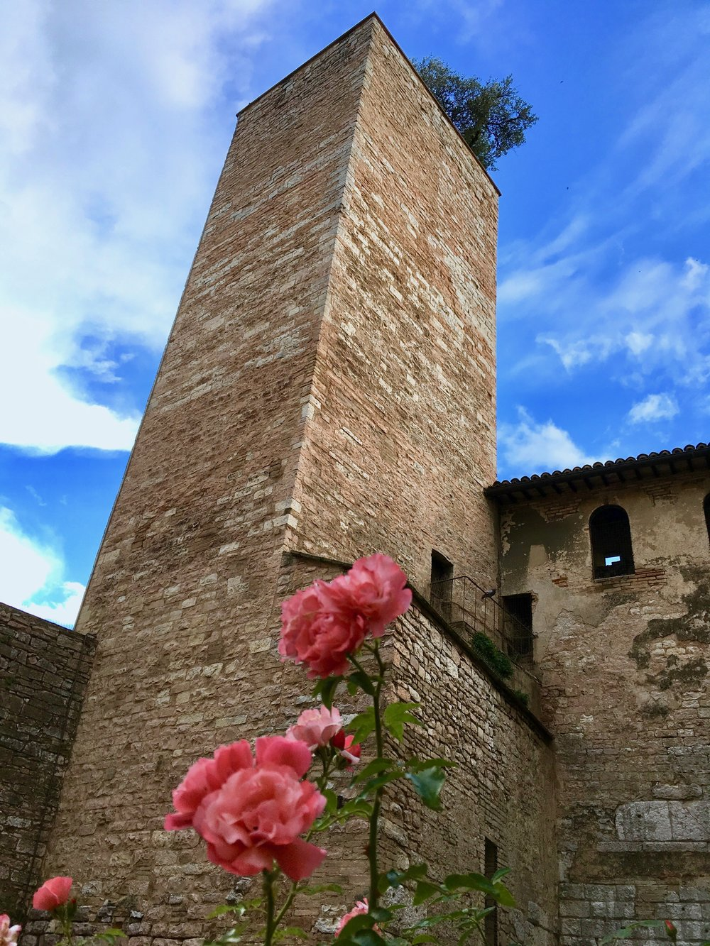 Spello's tower