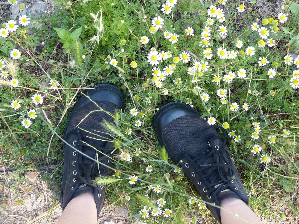 Siena's feet