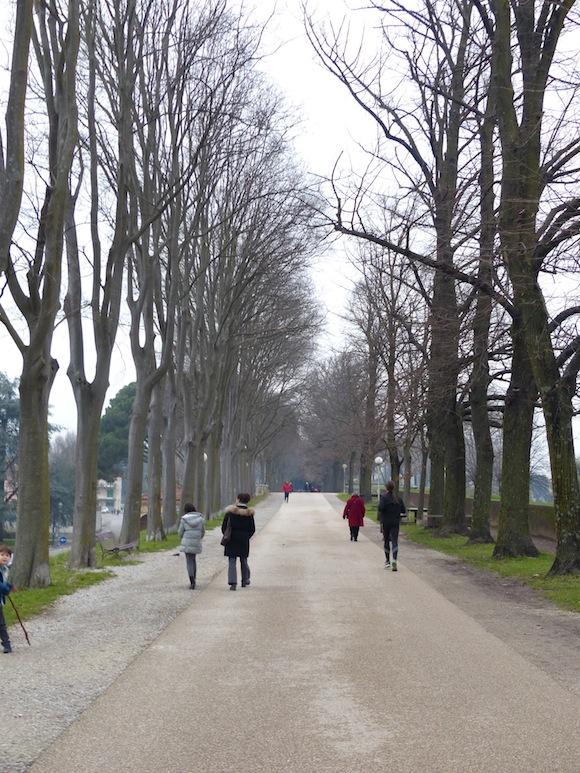 a walk along Lucca's walls