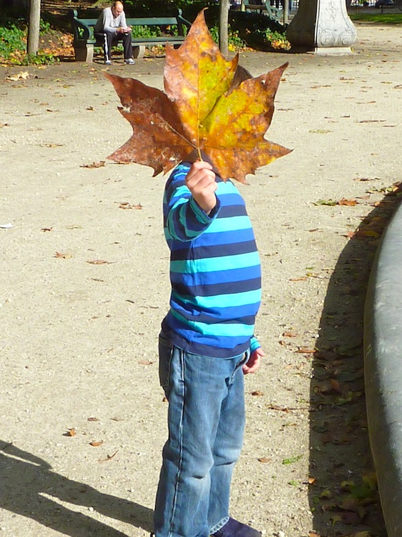 brussels-gabe-leaf.jpg