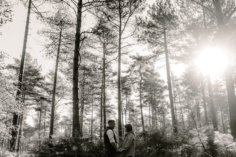 Farnborough-wedding-photographer-farnborough / Hampshire-wedding-photographer-hampshire / Fleet-wedding-photographer / engagement-photo-shoot /