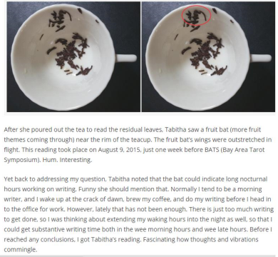 """My First Tea Leaf reading experience"" is a blog post by benebell wen, author of holistic tarot. This is an example of my style of reading."