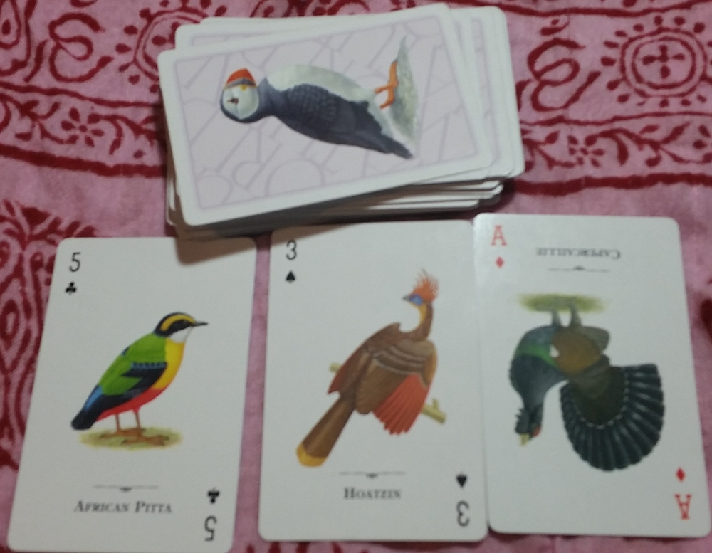 What will the bird-themed playing cards teach me about divination or fortune telling? Here are the cards I drew as an answer.