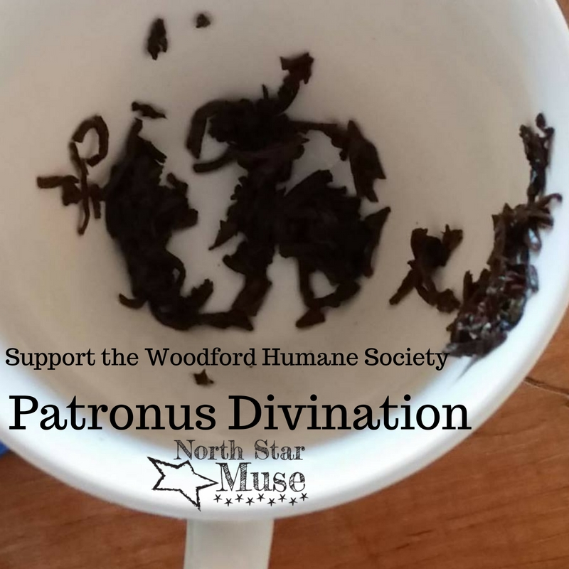 Patronus In A Tea Cup A Tea Leaf Reading Lesson With Your Animal