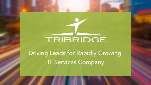 Tribridge_homepageFIN.png